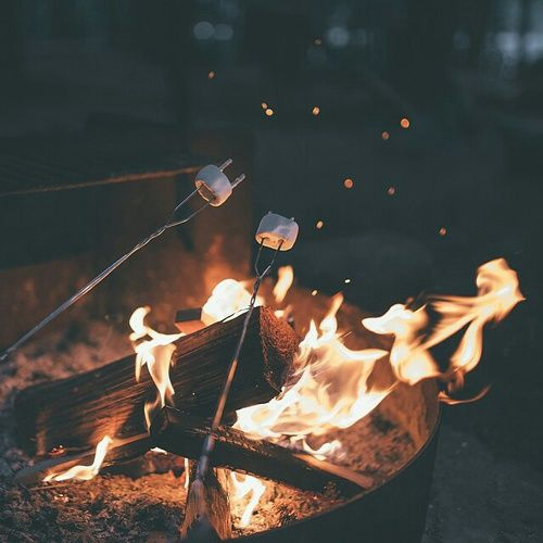 Bonfires earned the No. 1 fall activity preferred by FOHS Students in a recent fohssignal.net poll.