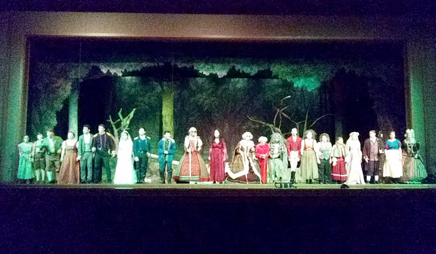 The+cast+of+%22Into+the+Woods%22+lines+up+for+the+curtain+call+during+dress+rehearsal.+The+musical+runs+from+Nov.+15-17+at+7+p.m.+Tickets+are+available+at+the+door+for+%248+%28adults%29+and+%245+%28students%29.+