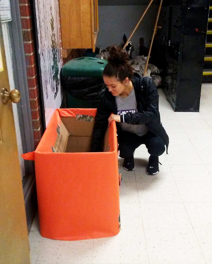 Emptying+a+shoe+donation+box%2C+President+Senior+Talynn+Simer+collects+the+shoe+for+the+drive.+The+shoe+will+be+donated++to+families+in+Haiti.